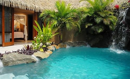 swimming pool Pool property Resort backyard Villa plant swimming