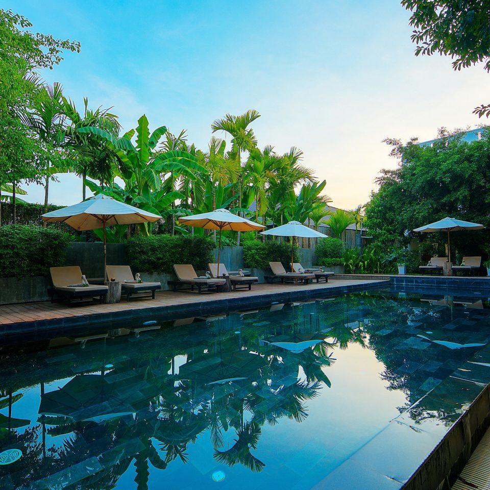 tree swimming pool leisure property Resort swimming backyard Pool Villa water sport condominium eco hotel mansion