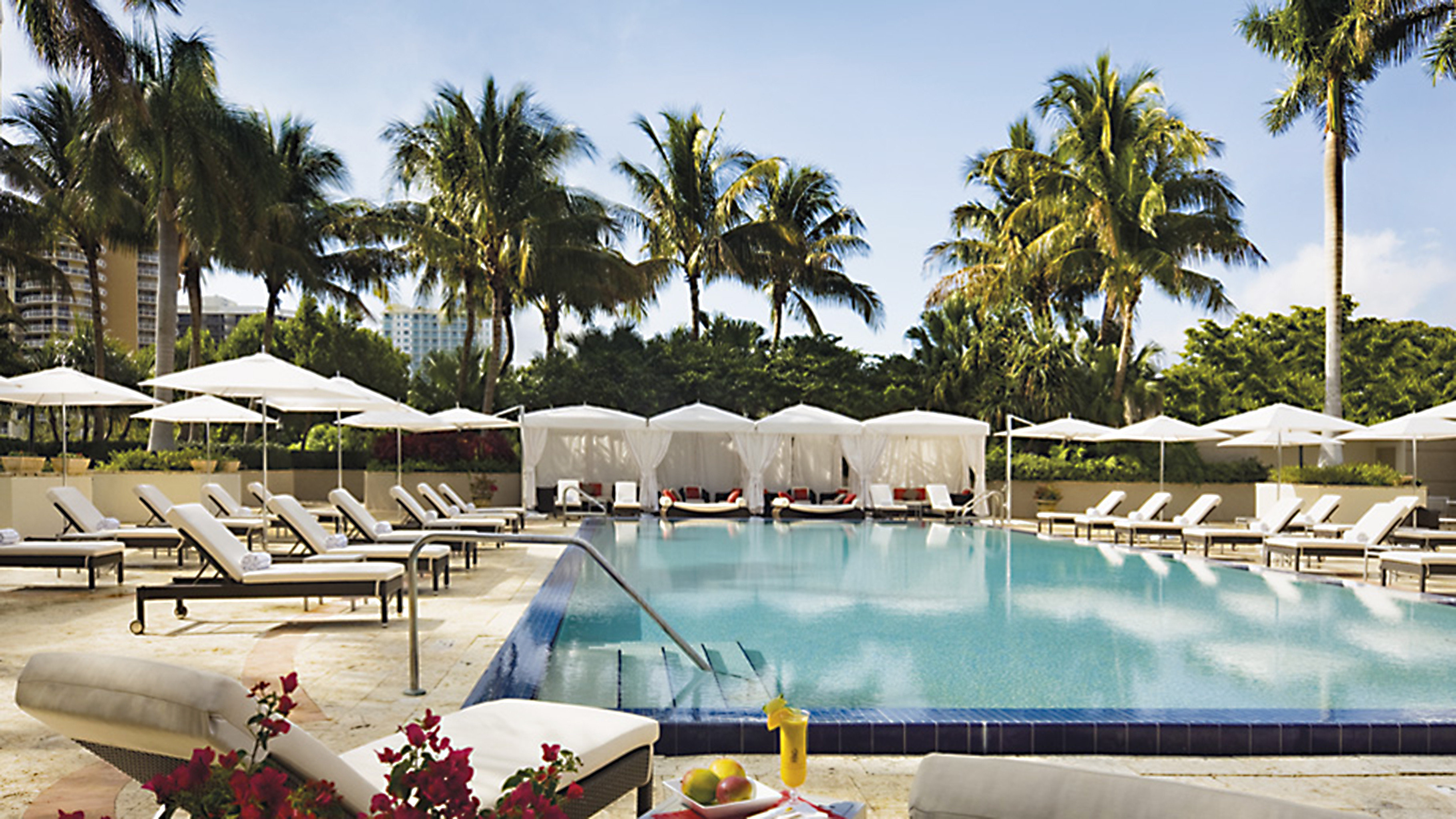 tree sky palm leisure swimming pool Resort Pool Villa backyard lined shore