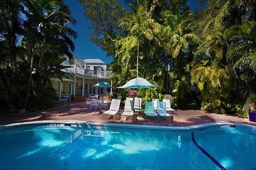 tree Pool Resort swimming pool property leisure Villa palm resort town blue condominium backyard eco hotel reef swimming bathtub colorful surrounded