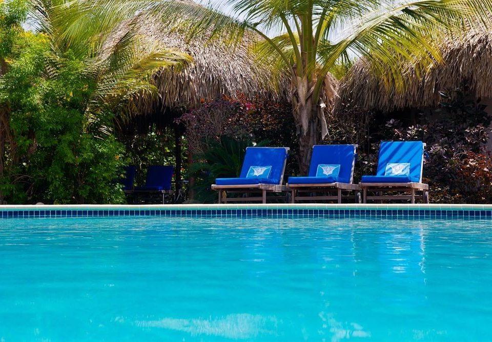 tree water Pool leisure blue swimming pool Resort water sport swimming resort town Water park