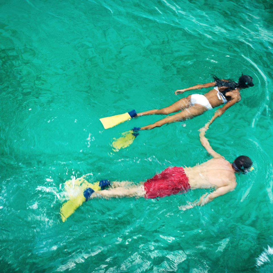 water Sport water sport swimming marine biology sports underwater Pool outdoor recreation recreation Sea snorkeling extreme sport diving freediving