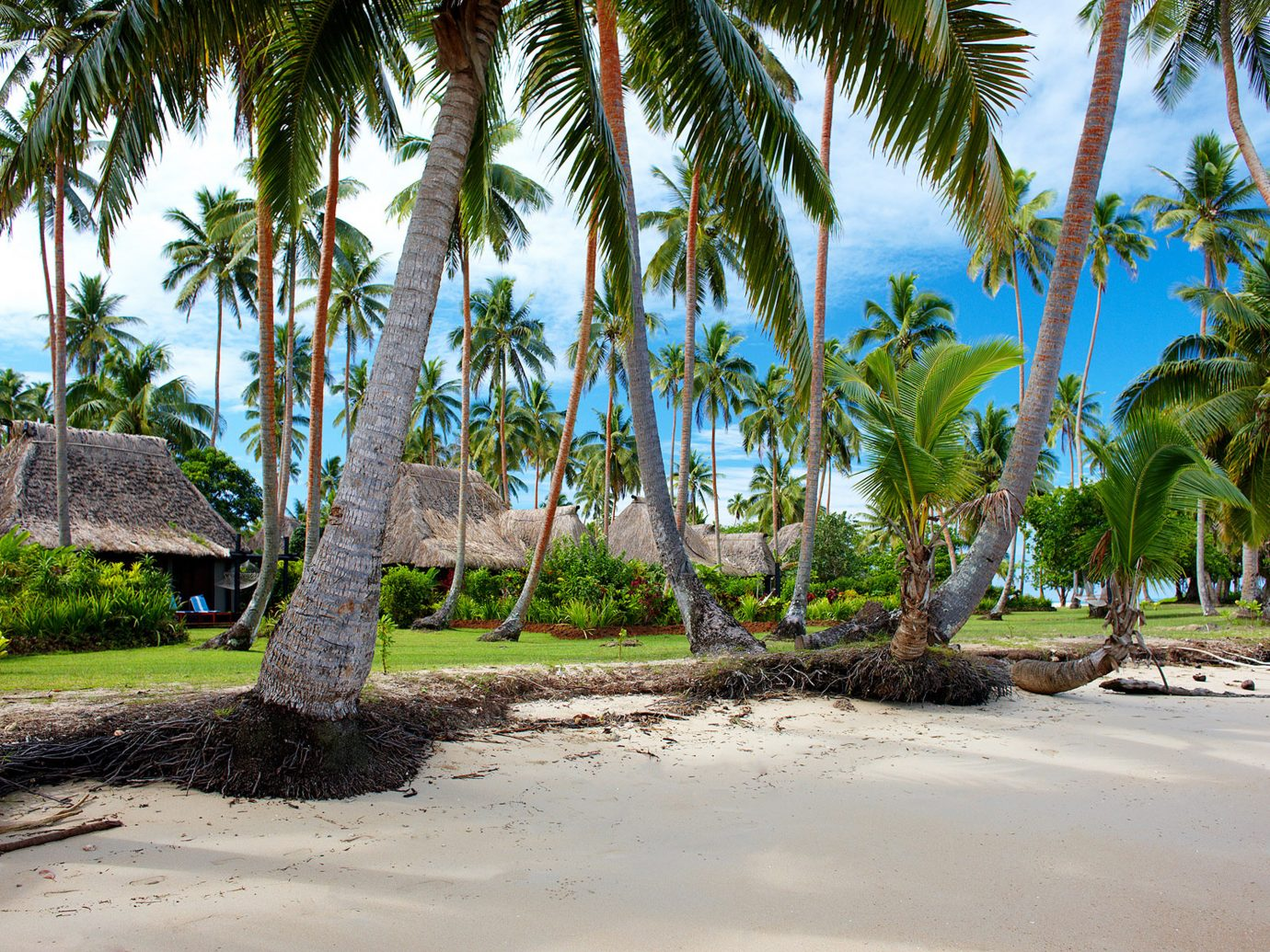 Beach at Jean-Michel Cousteau Resort, Fiji