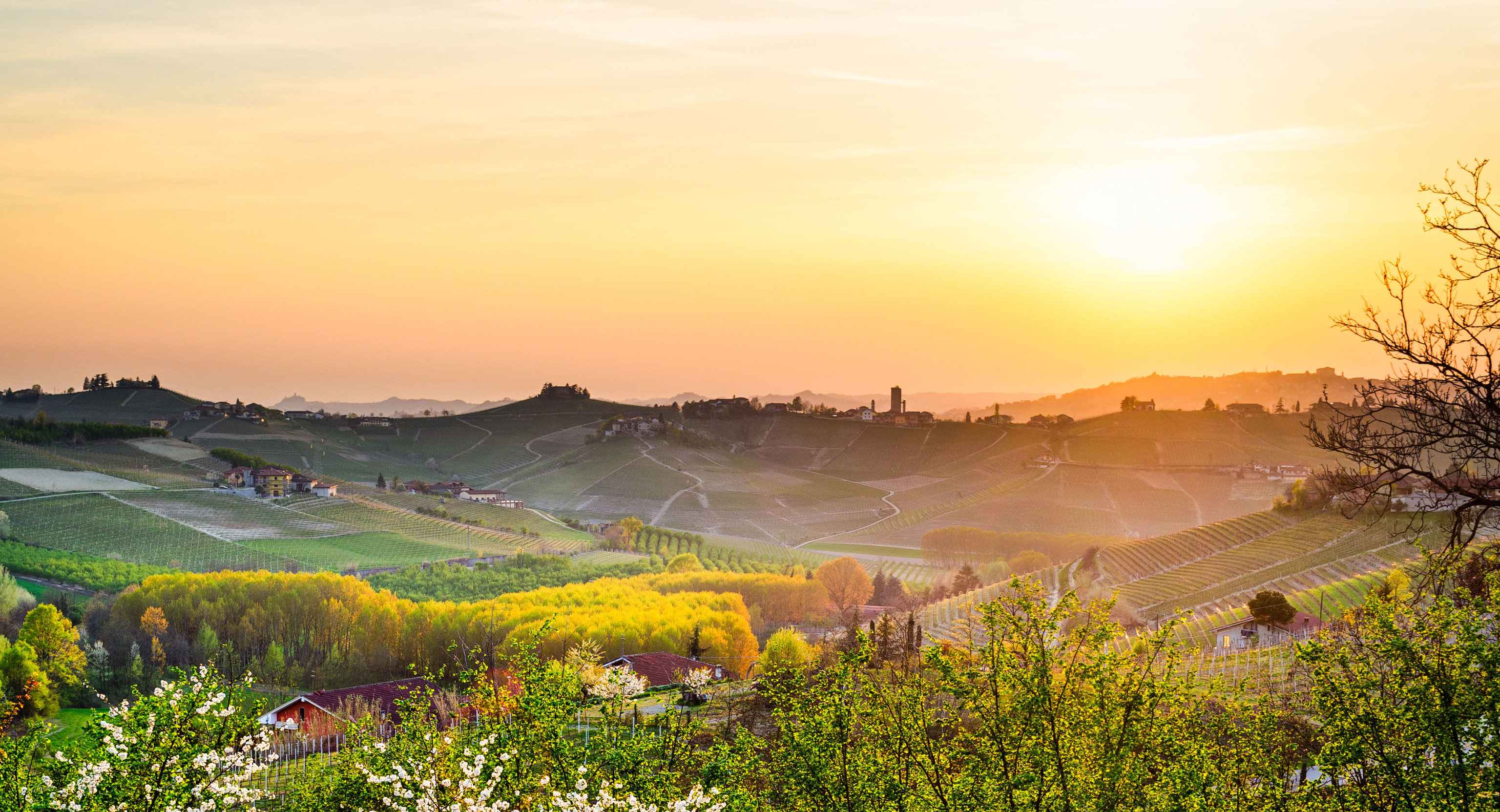 Food + Drink Hotels Italy Luxury Travel Trip Ideas sky outdoor grass Nature field morning dawn hill sunlight rural area landscape evening tree hill station grassland sunrise agriculture meadow mount scenery plain Sun Farm Sunset setting horizon mountain plant crop pasture lush highland
