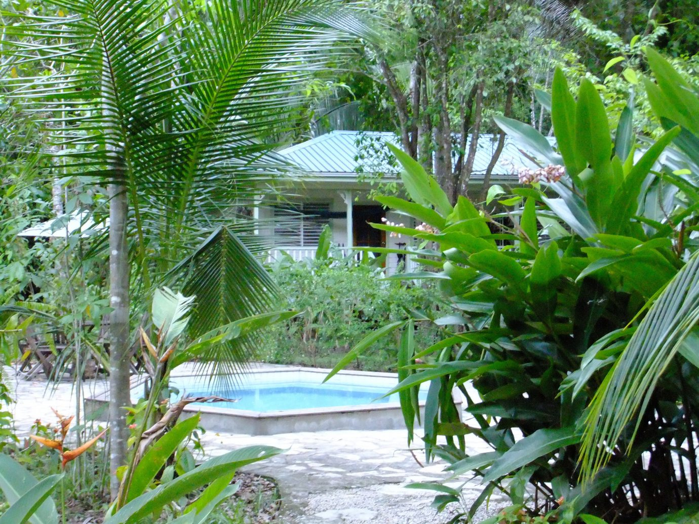 Pool At Hickatee Cottages In Punta Gorda, Belize