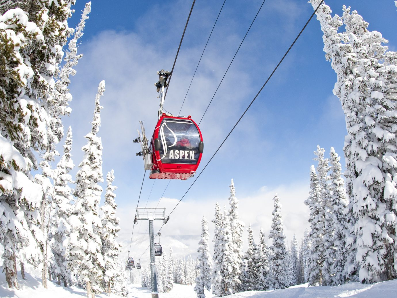 News Trip Ideas outdoor snow tree ski tow transport Winter skiing piste geological phenomenon Ski slope sports hill ski equipment mountain range winter sport nordic skiing air Resort alpine skiing downhill sports equipment