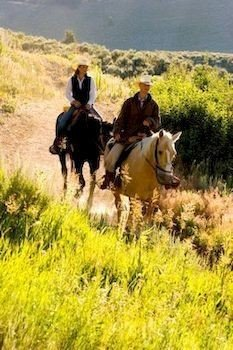 grass field mountain horse trail riding pasture grassland natural environment endurance riding ecosystem mammal herd grazing mustang horse prairie steppe equestrianism tall meadow horse like mammal mare animal sports pack animal Ranch