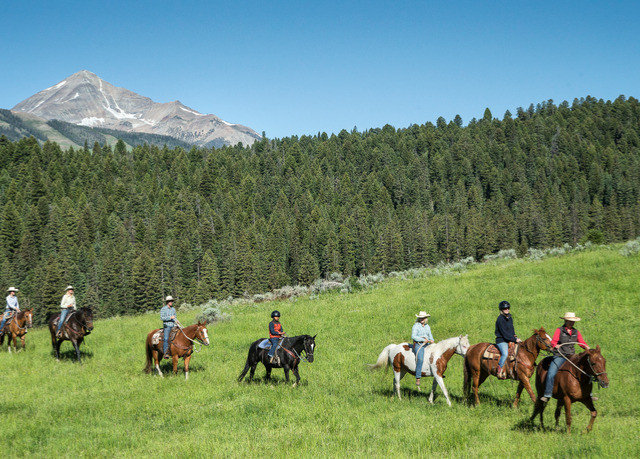 grass sky tree trail riding mountain pasture field grassland ecosystem group meadow animal sports grazing sports Ranch mountain range herd pack animal horse like mammal lush horse
