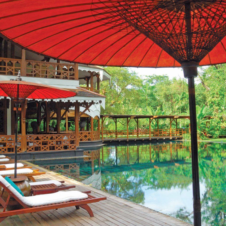 tree umbrella leisure red Resort outdoor structure accessory