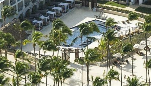 building condominium property Resort residential area plaza plant arecales