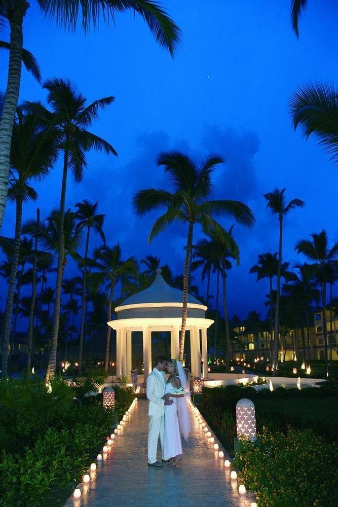 tree palm sky plant Resort arecales palm family caribbean tropics lined
