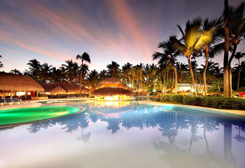 sky tree palm structure swimming pool Resort sport venue arecales evening dusk sunlight colorful shore
