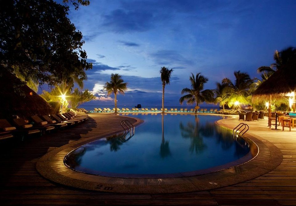 sky tree night evening swimming pool Resort arecales dusk lighting landscape lighting palm shore