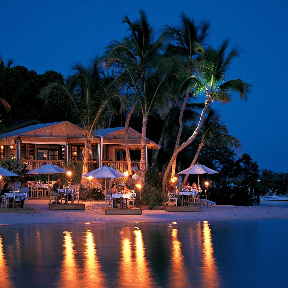 tree sky water Resort night arecales evening dusk swimming pool surrounded