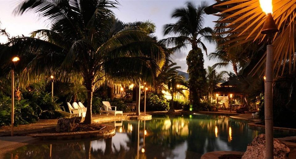 tree sky plant Resort night arecales evening light restaurant landscape lighting palace palm