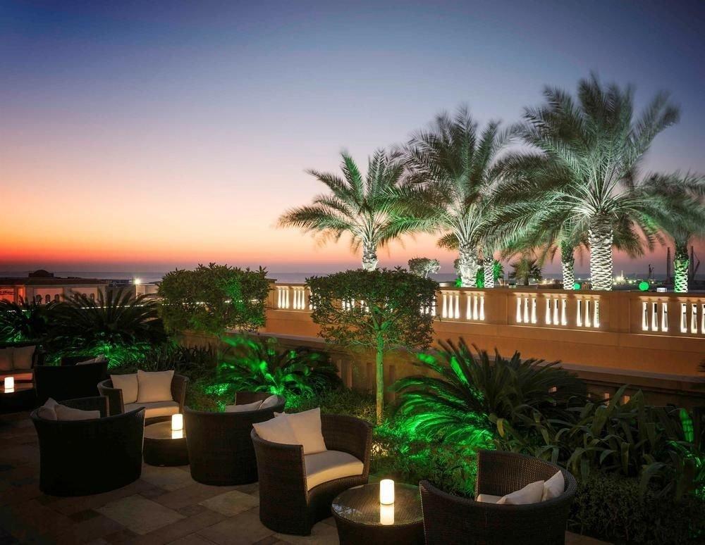 plant tree Resort arecales palm family green palm tropics flower