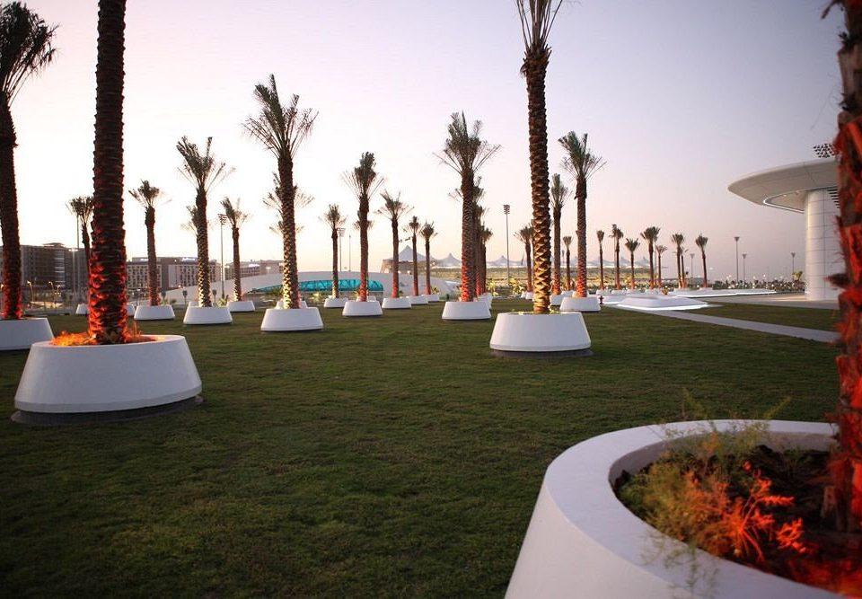 sky grass tree plaza arecales hacienda Resort plant