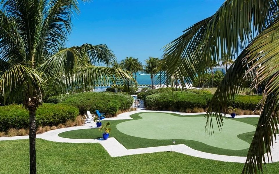 tree grass palm plant leisure property Resort swimming pool arecales lawn