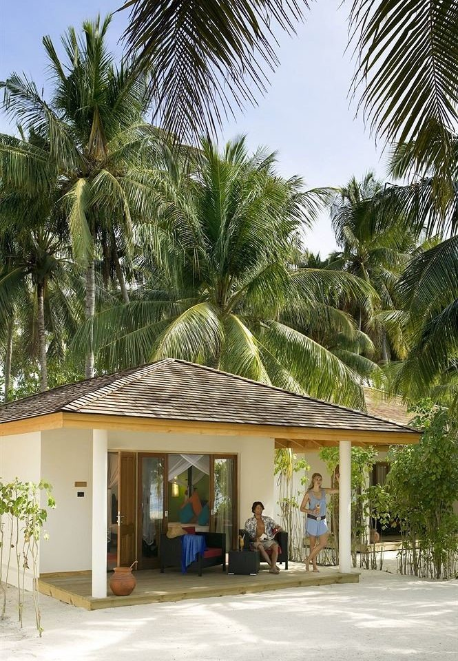 tree plant Resort house arecales home palm family restaurant palm