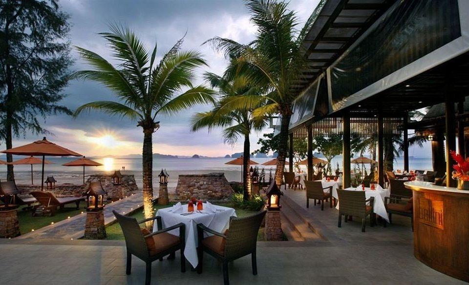 tree leisure Resort restaurant palm arecales