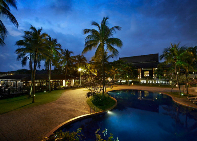 tree palm swimming pool Resort arecales mansion plant night lined