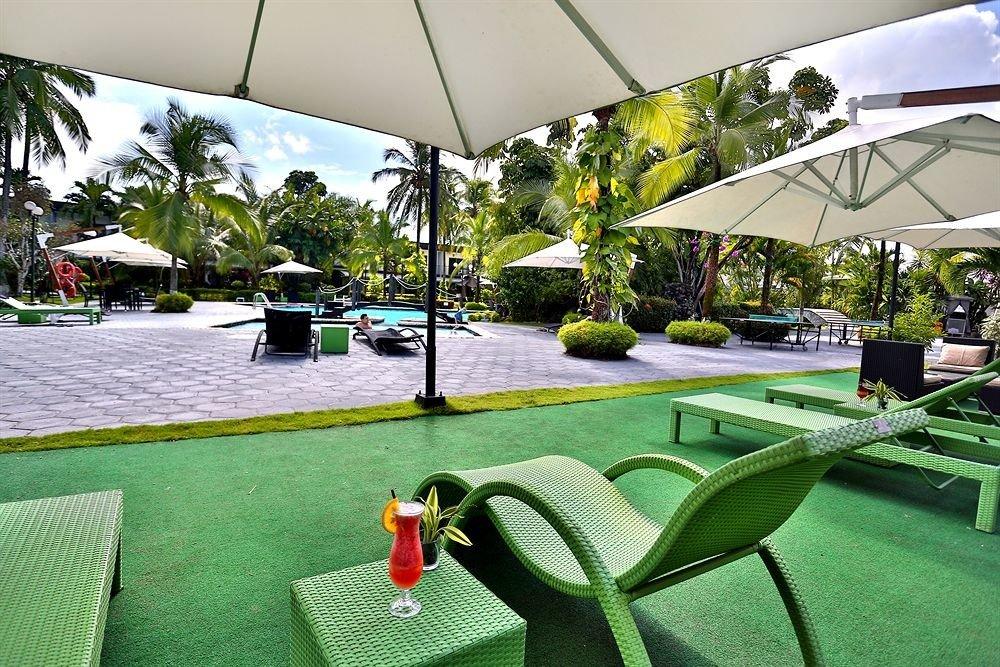tree grass green leisure chair home lawn backyard Resort set