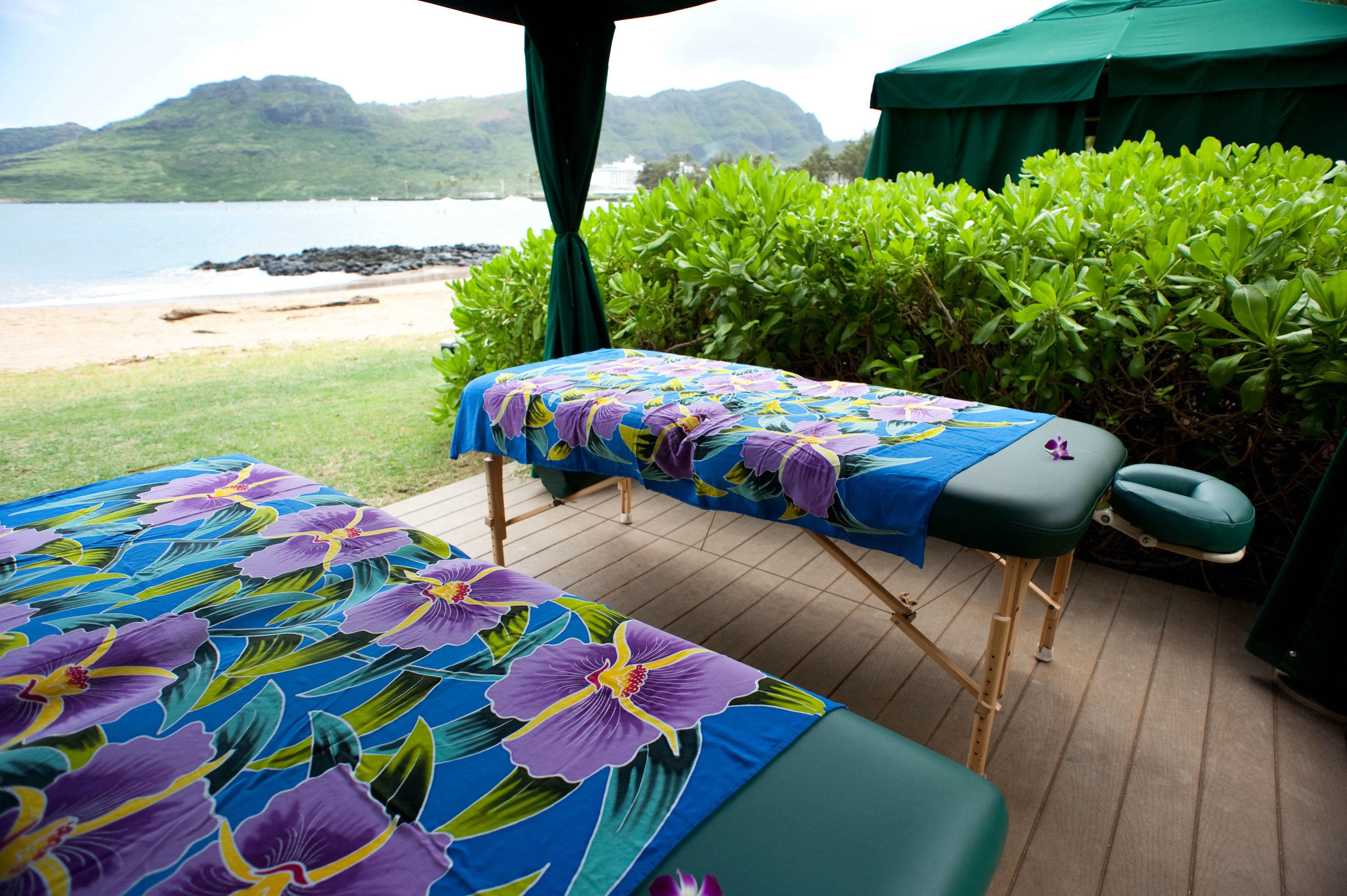 leisure swimming pool Resort backyard colorful colored