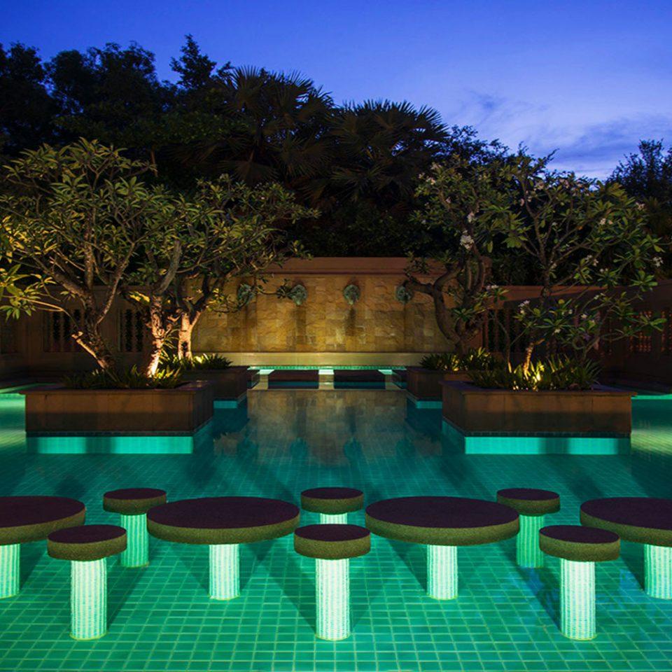 tree swimming pool leisure reflecting pool green Resort lighting landscape lighting backyard mansion