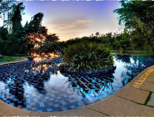tree swimming pool reflecting pool Resort backyard landscape lighting pond mansion