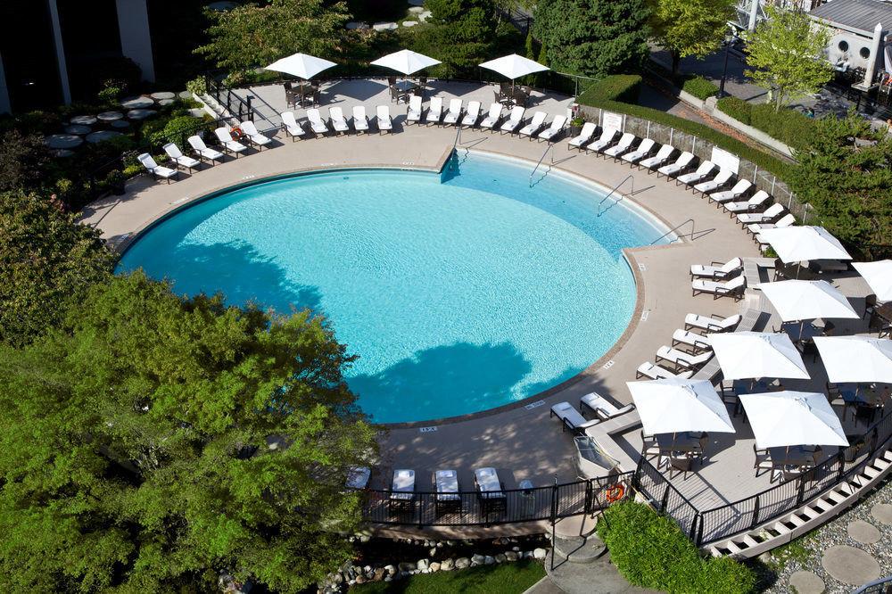tree swimming pool property leisure mansion Resort backyard
