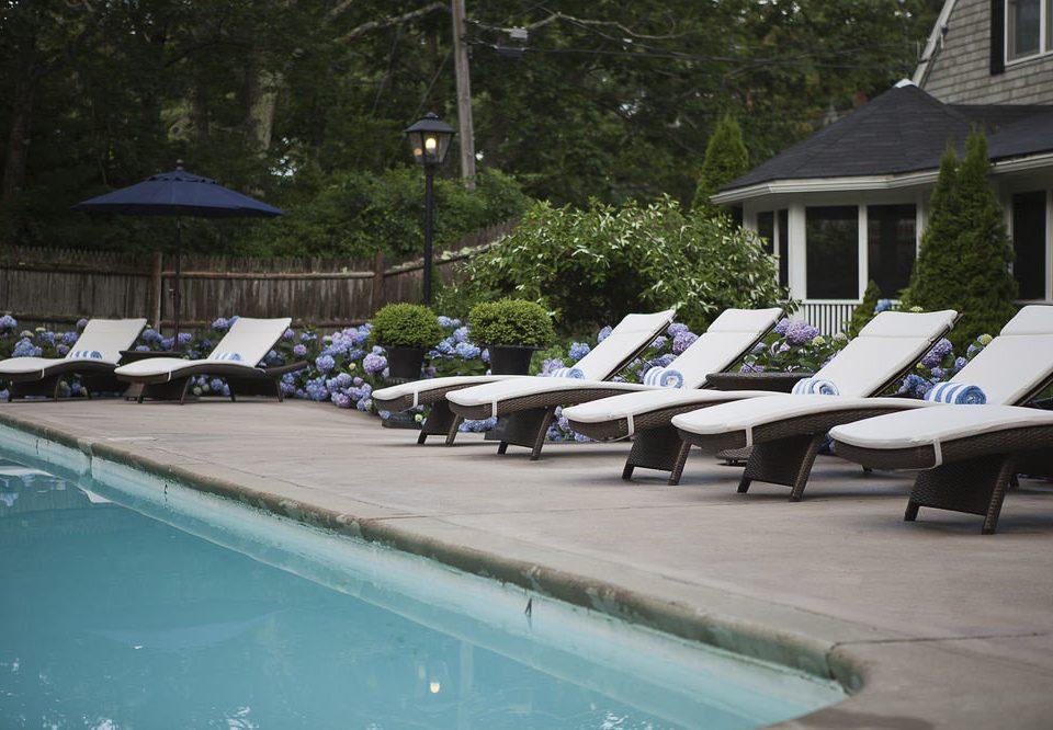 tree swimming pool backyard Resort
