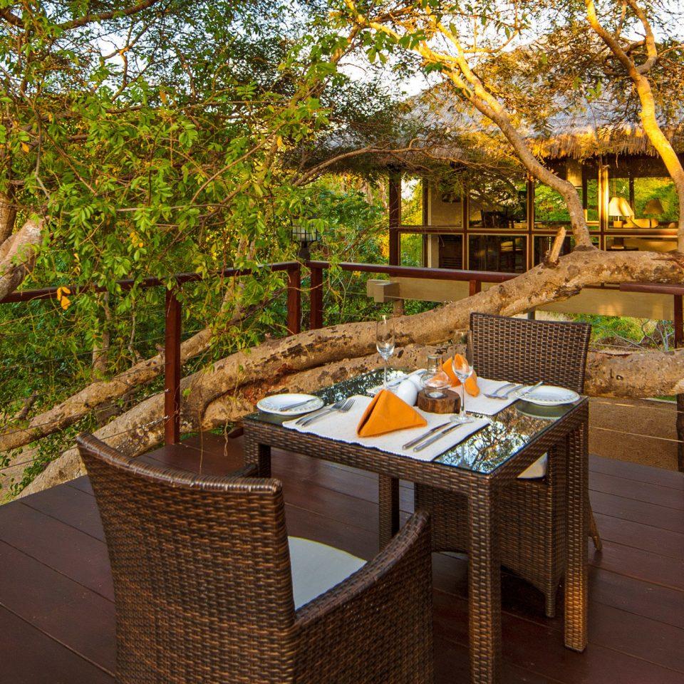 tree Resort backyard