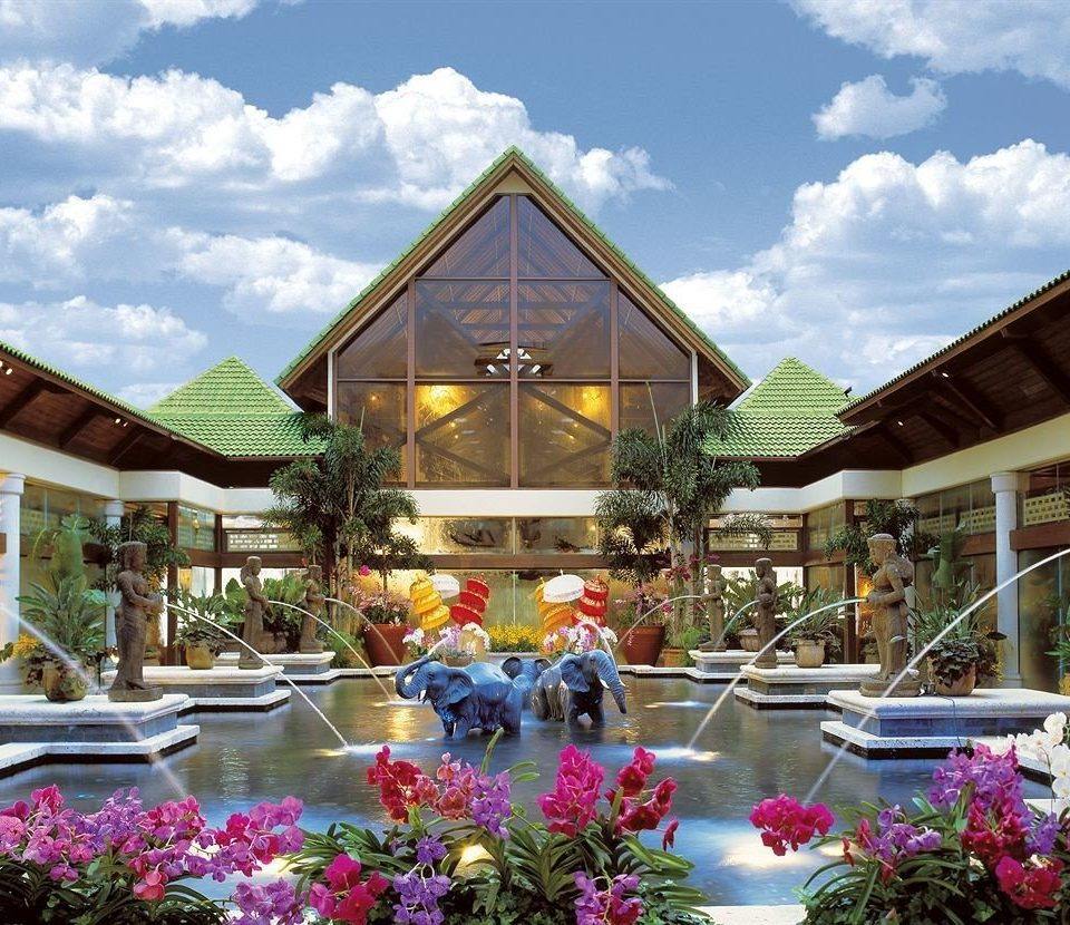 sky building flower Resort floristry home residential area restaurant house colorful day