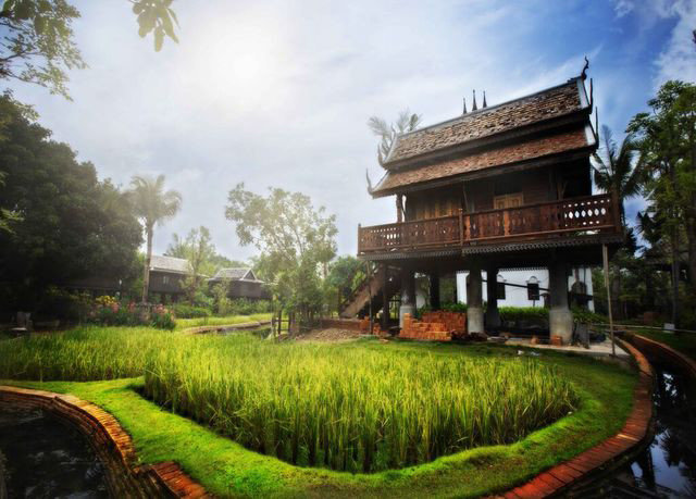 tree grass sky property building green mansion residential area Resort