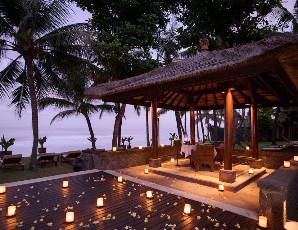 tree building Resort