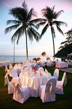 tree palm ceremony event plant Resort