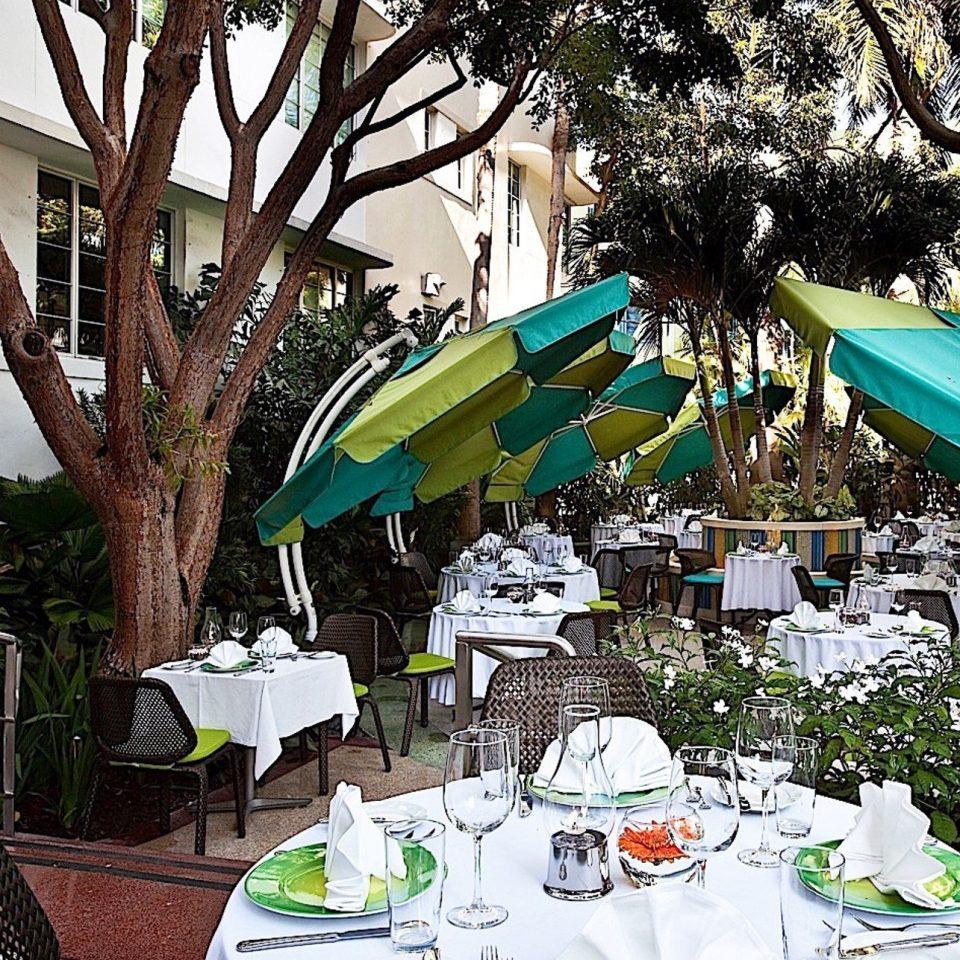 tree chair green flower Resort restaurant set