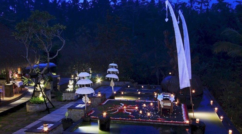 tree night light Resort screenshot christmas decoration