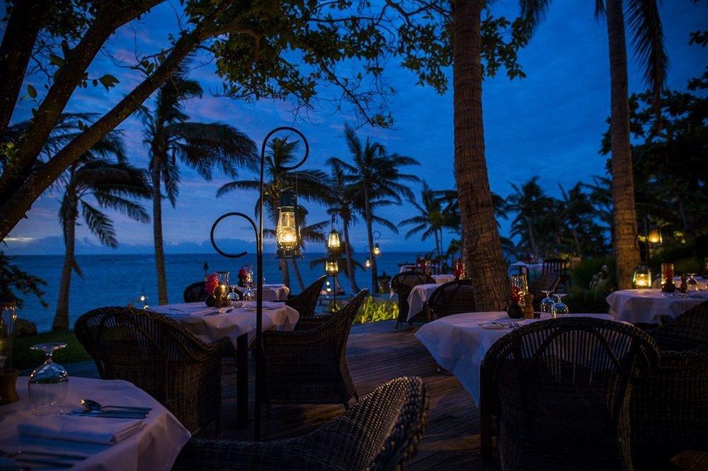 tree Resort night evening restaurant landscape lighting dusk plant