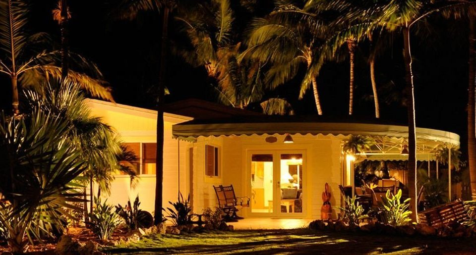 tree landscape lighting night house home Resort lighting evening mansion restaurant hacienda plant palm