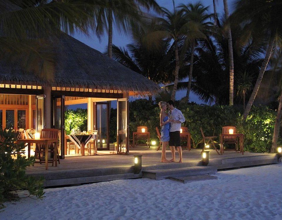 tree road Resort night house home landscape lighting lighting evening plant