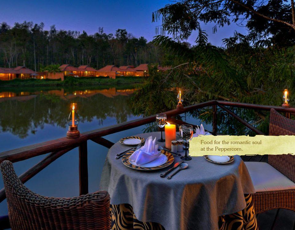 tree leisure evening Resort