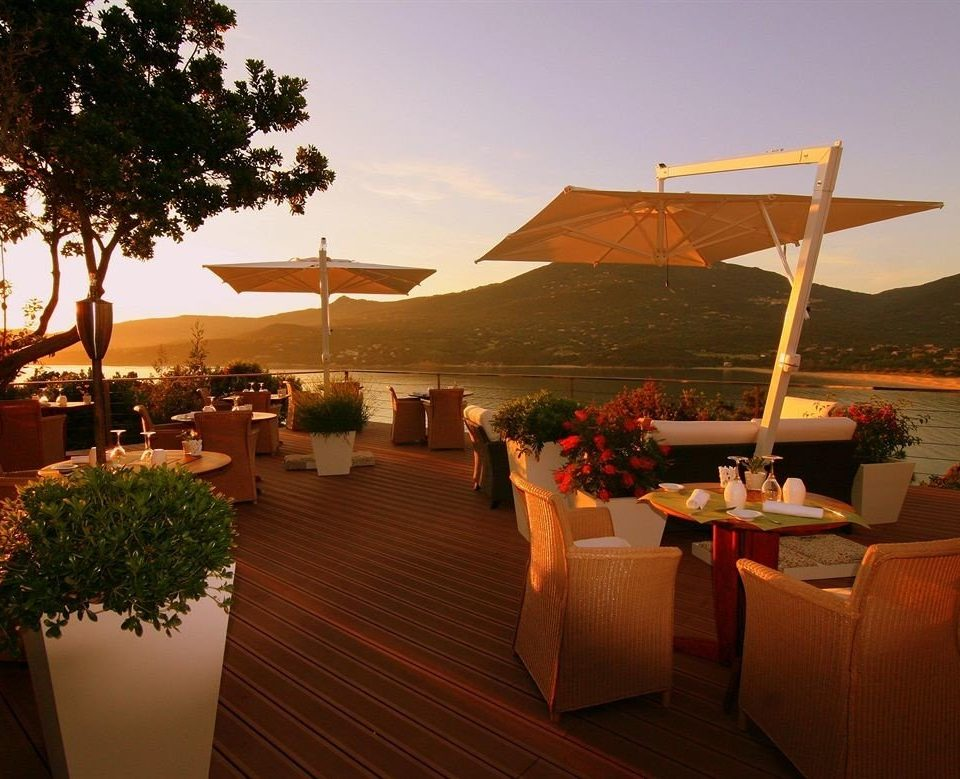 tree sky restaurant Resort evening