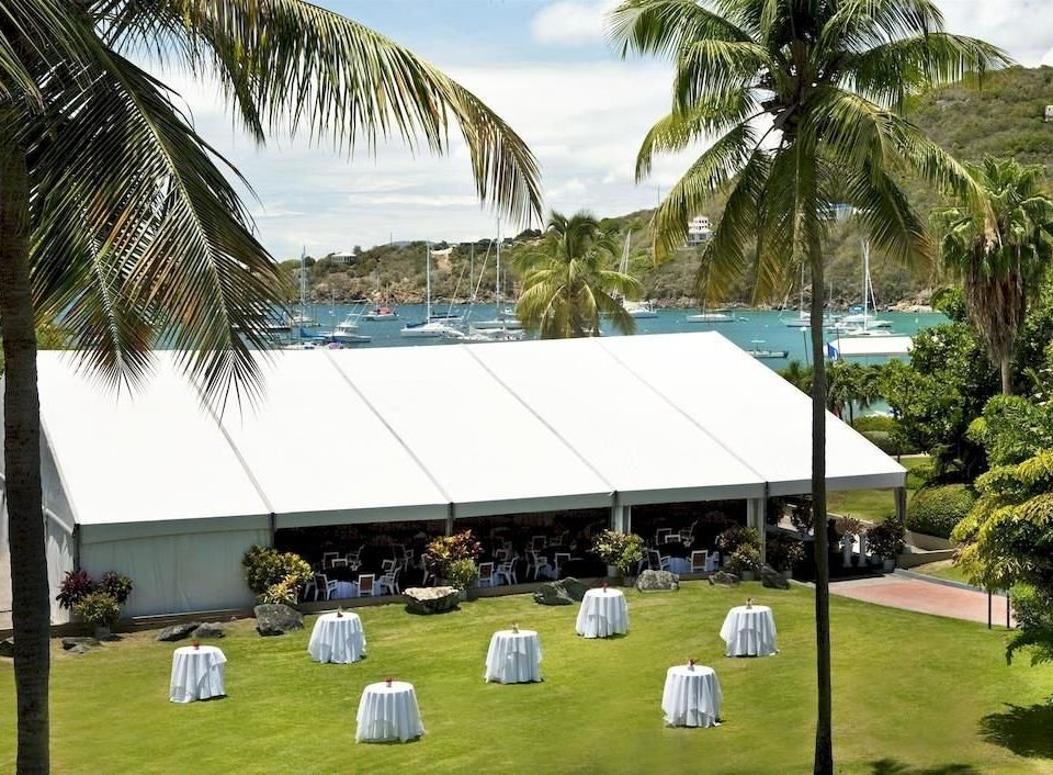 tree grass plant leisure sport venue Resort tent stadium palm