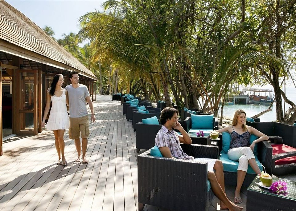 tree leisure Resort restaurant travel
