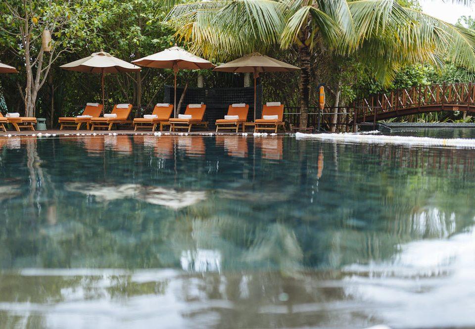 tree water swimming pool Resort orange pond lined