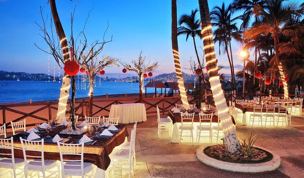 sky Resort plant plaza palace palm