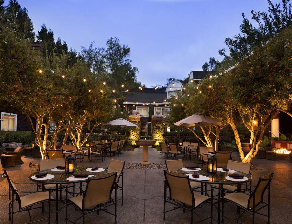 tree sky property Resort restaurant plant