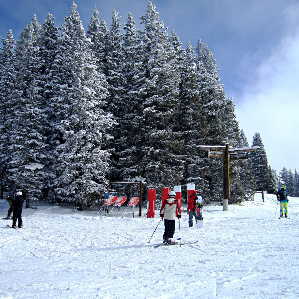 Resort Scenic views Ski Sport snow tree skiing sky group Winter slope weather footwear season geological phenomenon piste ski equipment winter sport ski slope nordic skiing mountain range day
