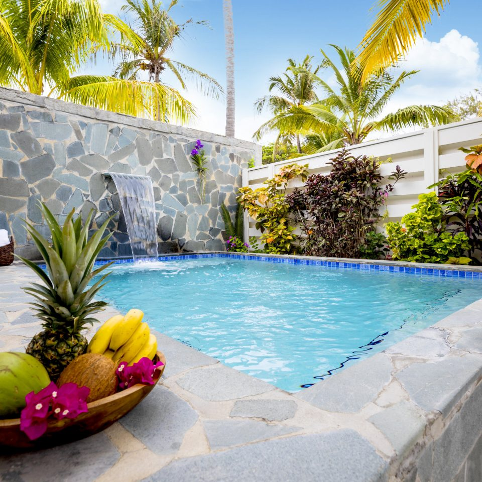 property swimming pool Resort majorelle blue arecales leisure palm tree Villa backyard house plant hacienda tree outdoor structure home water water feature landscaping amenity
